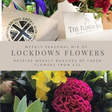 Lockdown Flowers Special